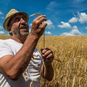 https://www.goustut.fr/wp-content/uploads/2019/04/philippe-guichard-cereales-300x300.jpg